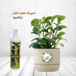 تصویر محصول اسپری حشره کش ارگانیک دکتر گاردن و یک گلدان