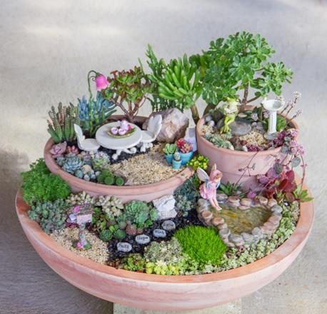 نمونه باغ کوچک سحر آمیز ساکولنت
