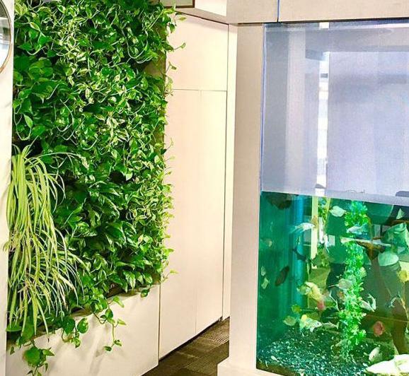 گلدان دیواری طرح دیوار سبز مدل L1 بسته 6 عددی